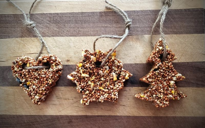Cookie Cutter Bird Feeders - Easy Craft For Kids   Frugal Fun Mom